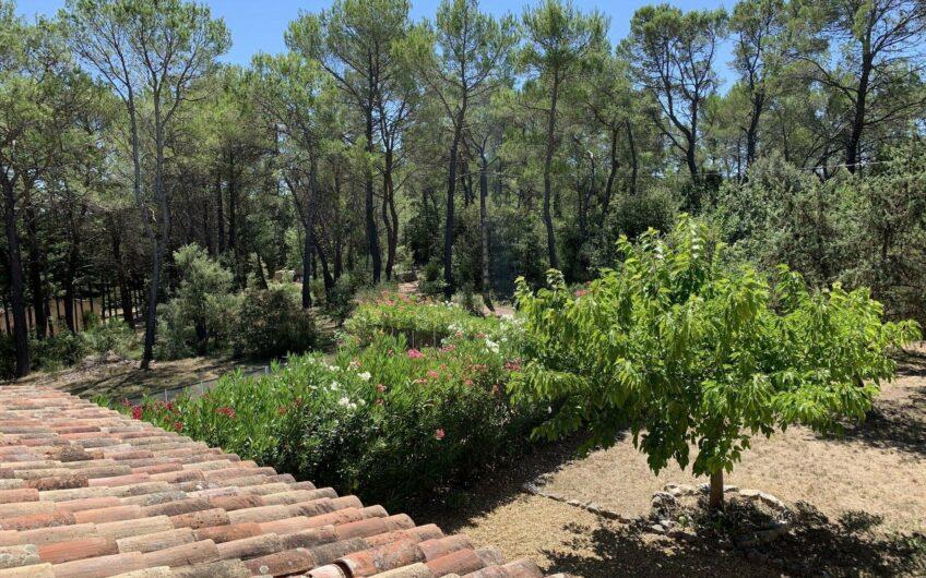 Villa au calme avec piscine – Seillans