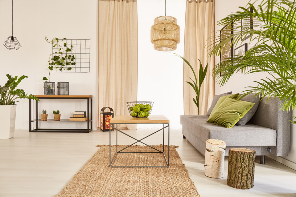 Well-lighted flat interior in a furnished property