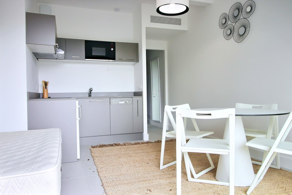 modern kitchen with grey cabinets and nude rug