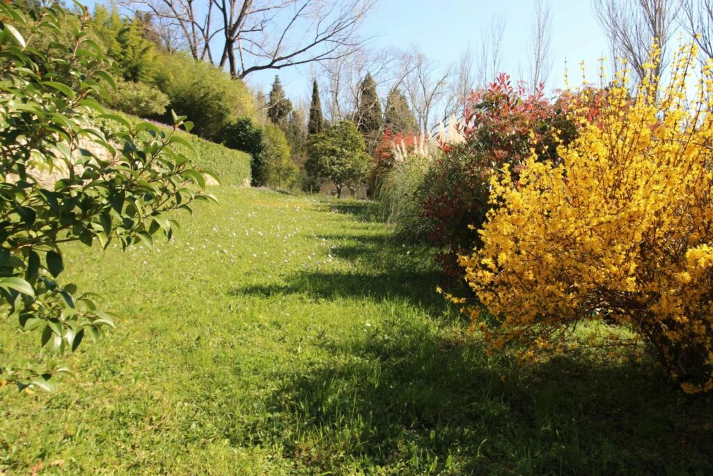 villa in grasse with a large garden filled with trees