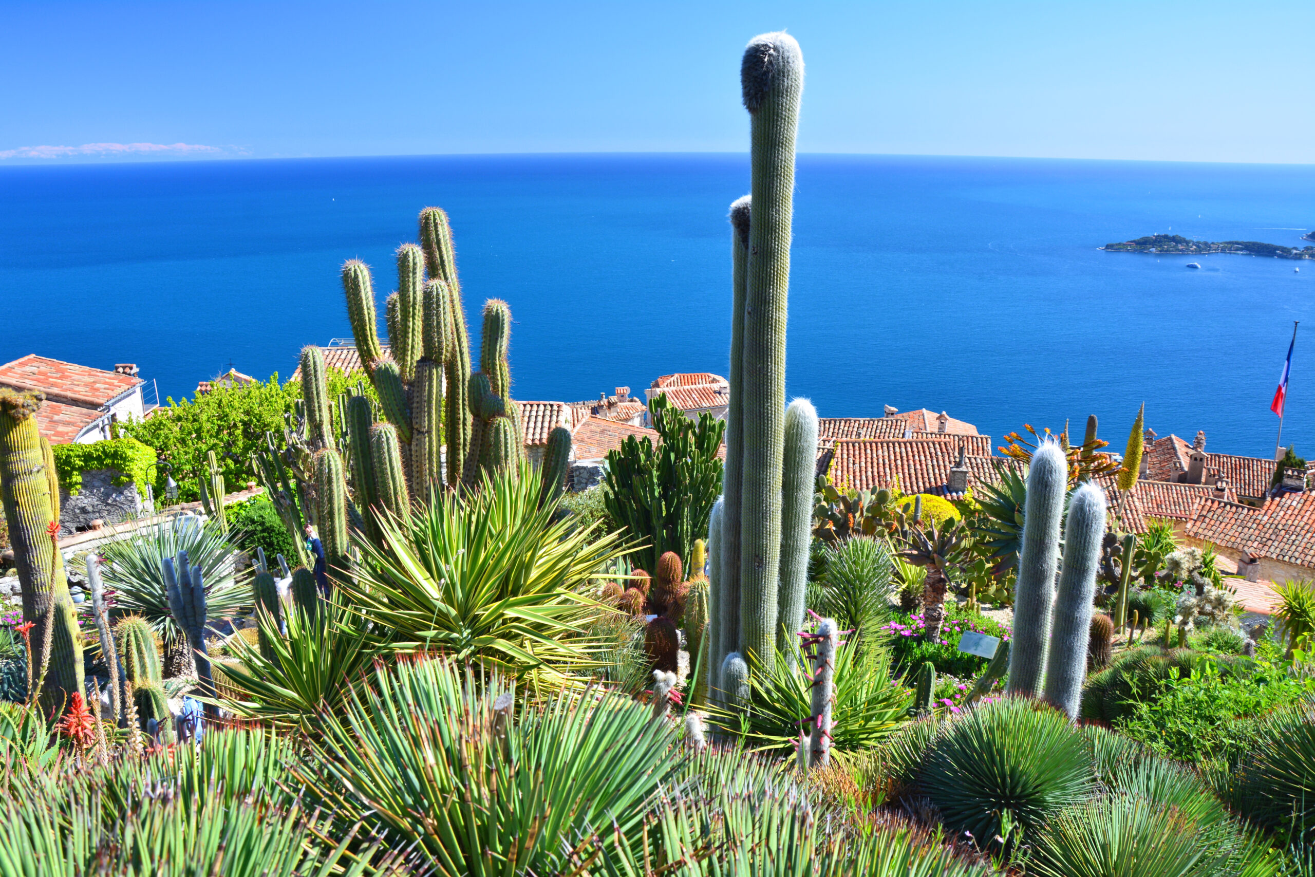 view from exotic garden in eze village south france
