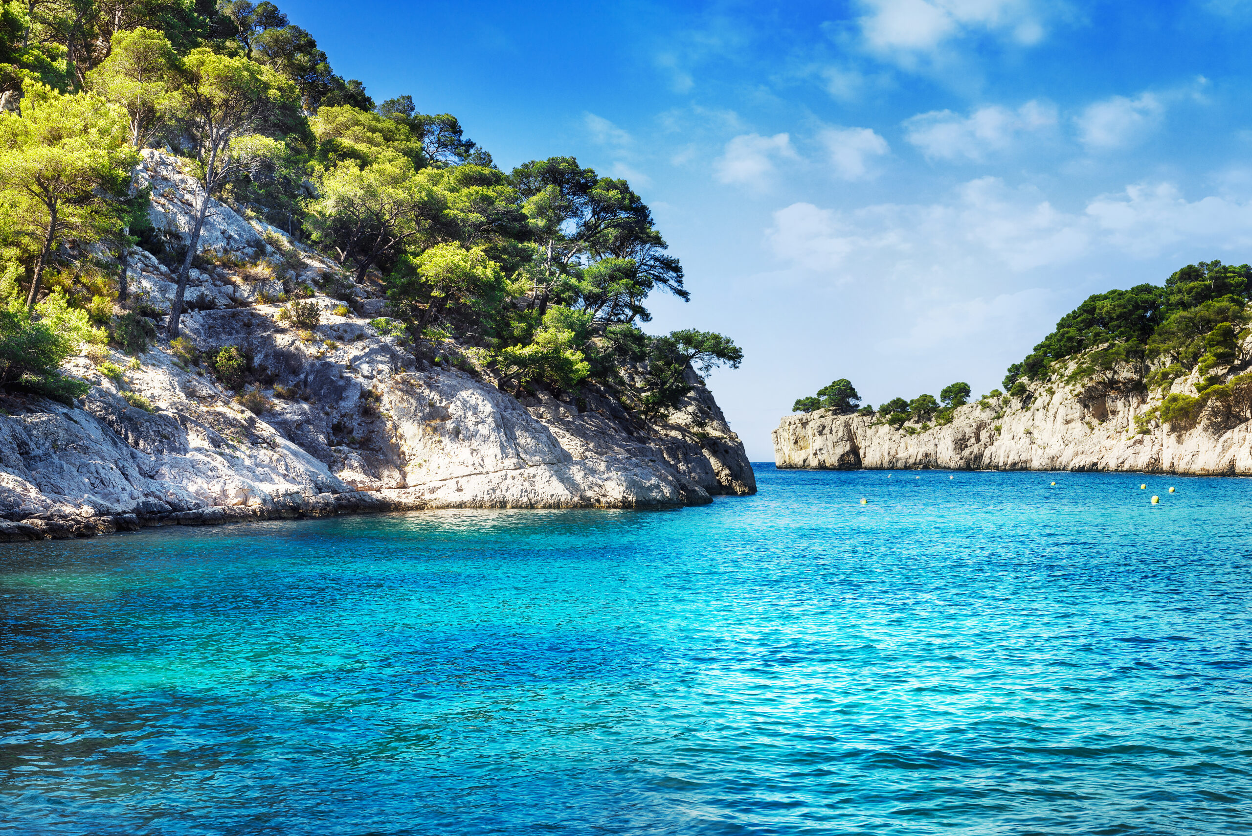 Calanque in Cassis with turquoise waters and cliffs filled with green trees and plants.