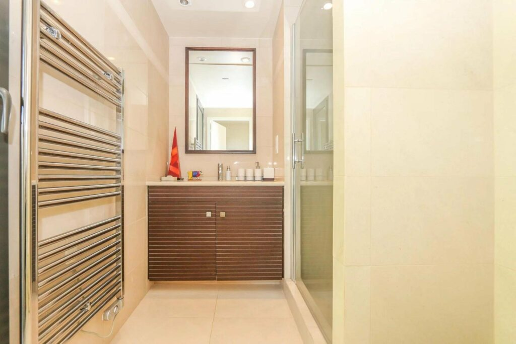 bathroom of apartment in nice mont boron for sale