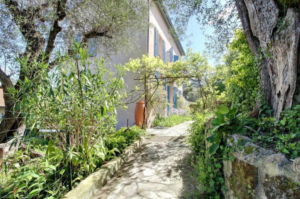 bright green garden of home in cannes