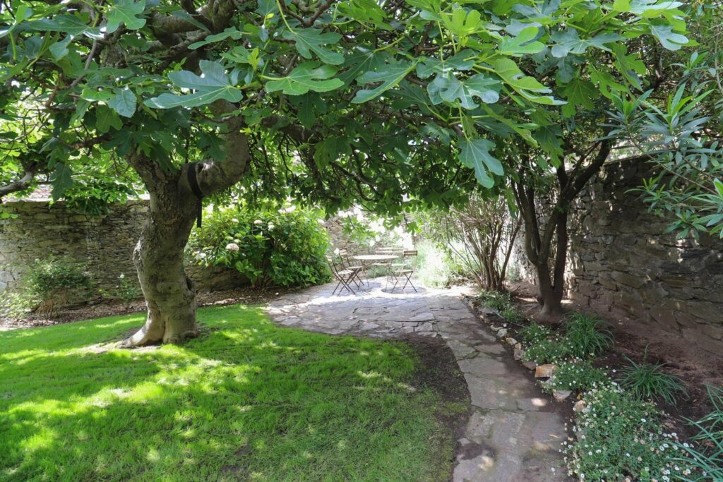 garden of apartment in southern france with stone path in center and two large green trees on the side