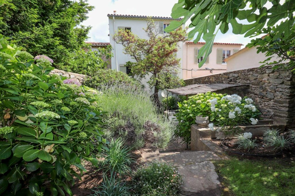 backyard garden filled with trees and southern plants