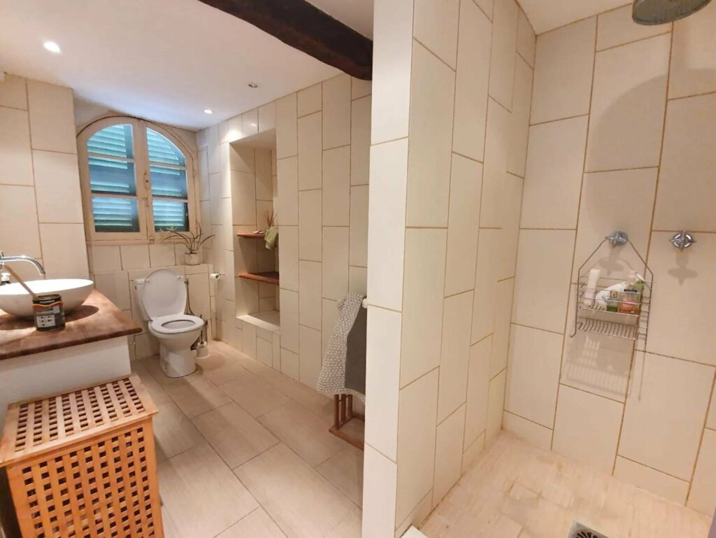 large open bathroom with shower and french door window