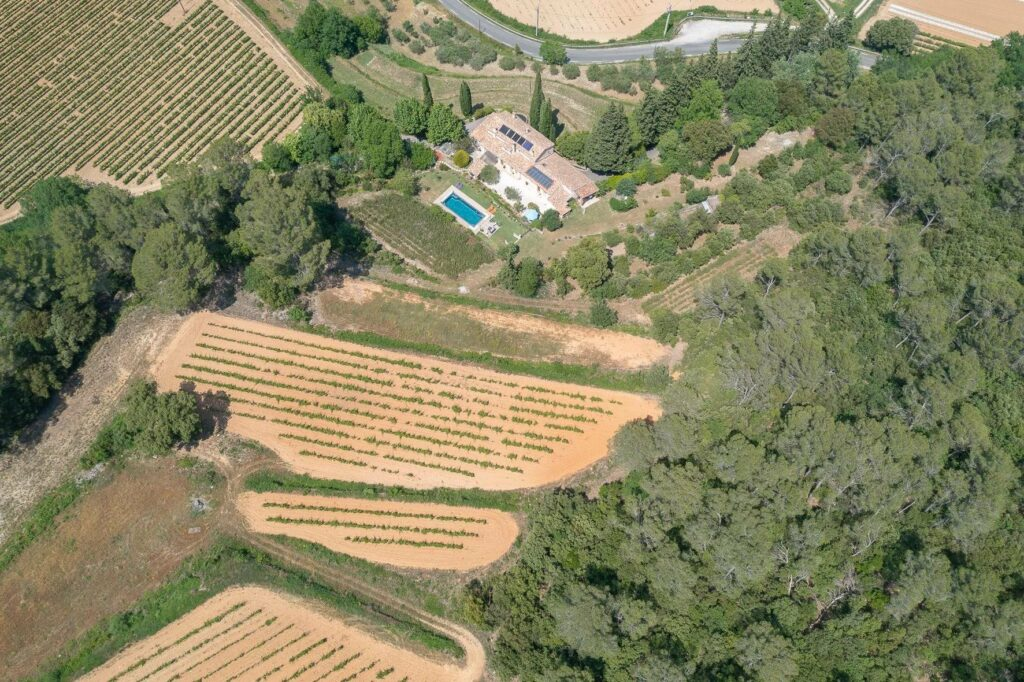 large vineyard on property in south france surrounded by trees