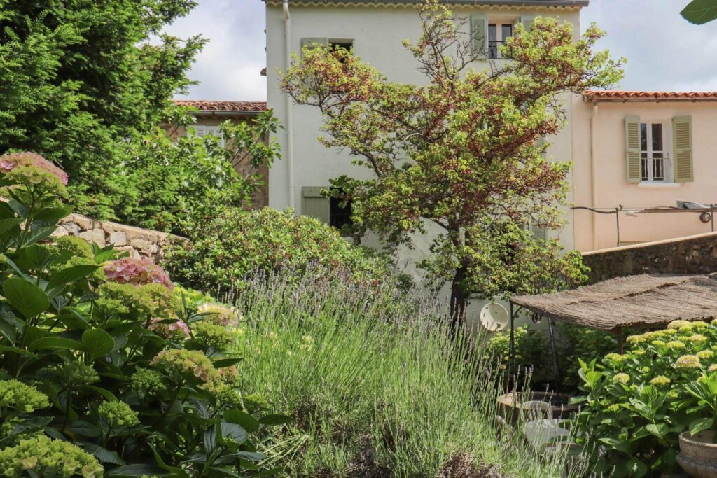 garden of property apartment in southern france