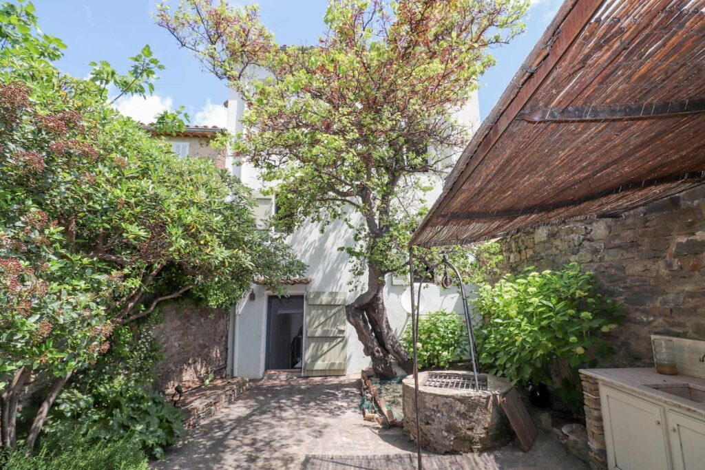 backyard garden of apartment in south france