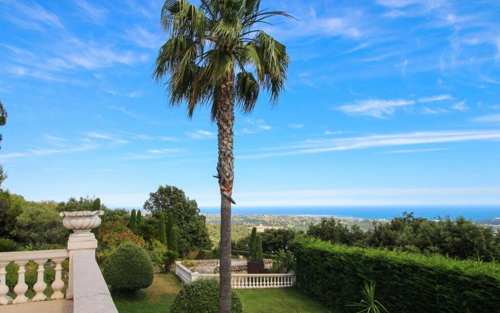 large backyard with tall palm tree and view of the sea