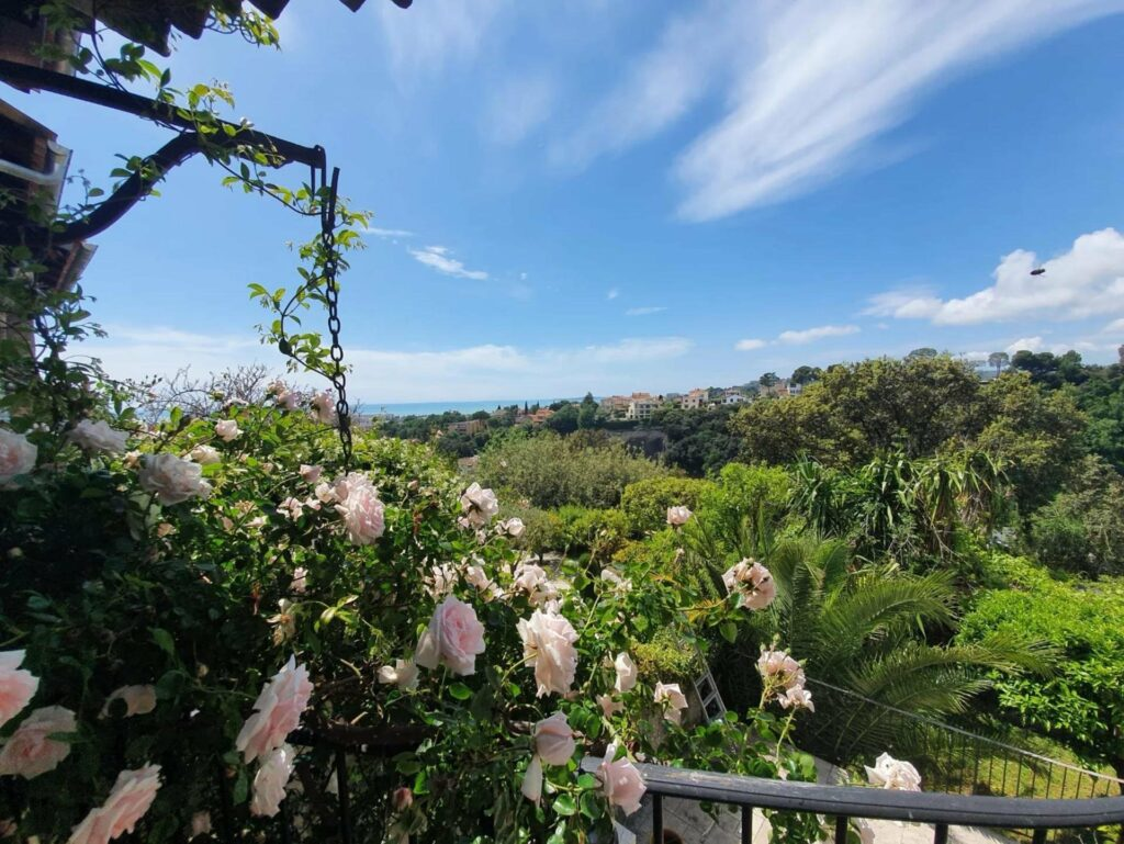 view from balcony of villa in cagnes sur mer with light pink roses over looking trees and sea