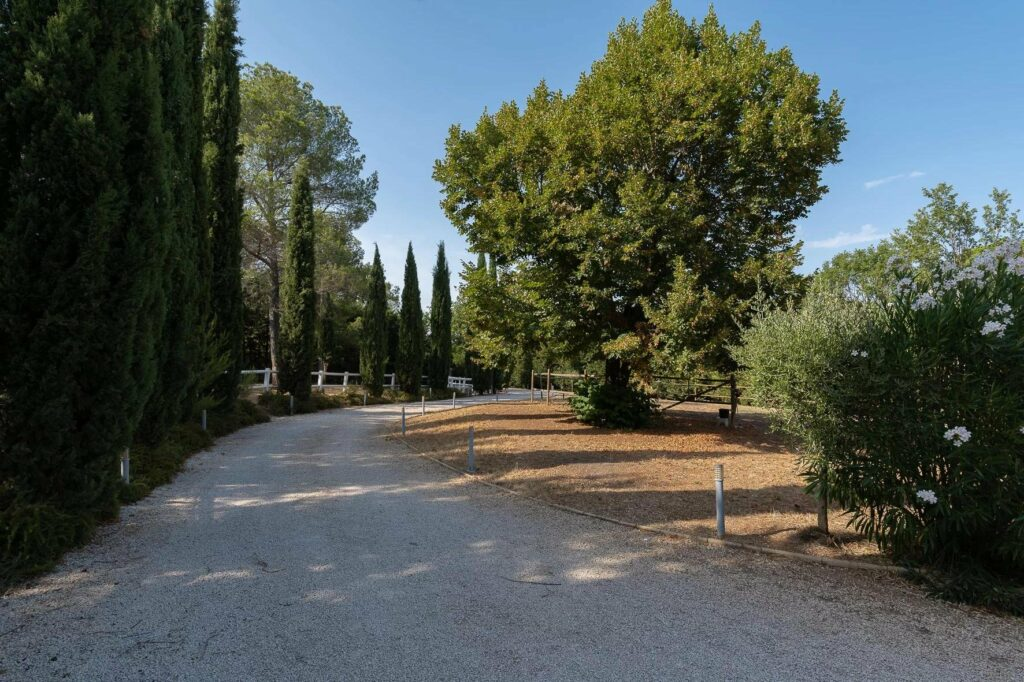 entrance driveway of villa in draguignan with large tall trees