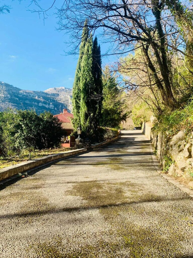 paved driveway of villa in south france with view of trees