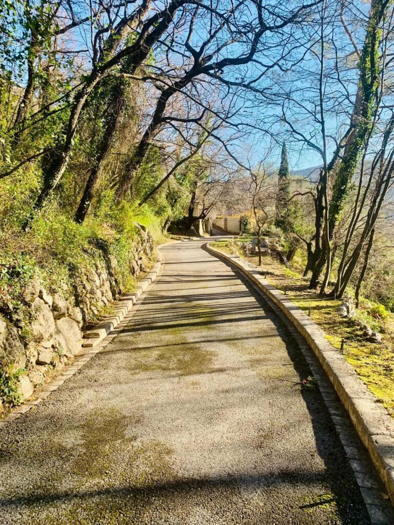 driveway of villa in Tourettes-sur-Loup with trees on side