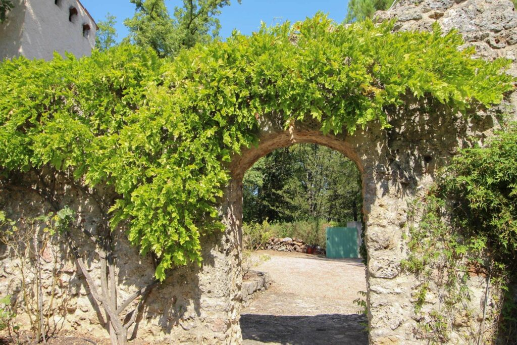 archway with covered leaves and stone walls