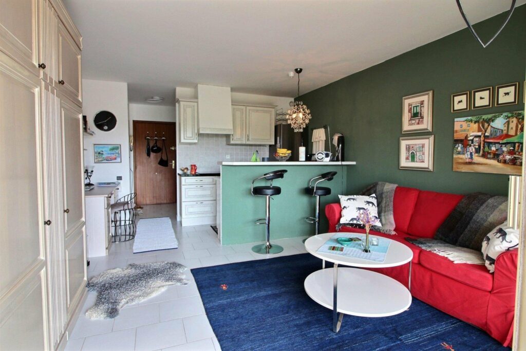 layout view of studio apartment for sale in south france
