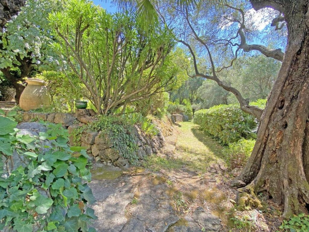 large garden with large trees of property in grasse